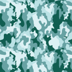 camouflage19