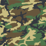 camouflage24-12