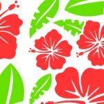 Hawaiian-flower1